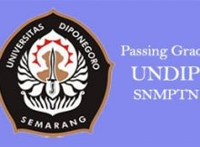 passing grade undip snmptn terbaru