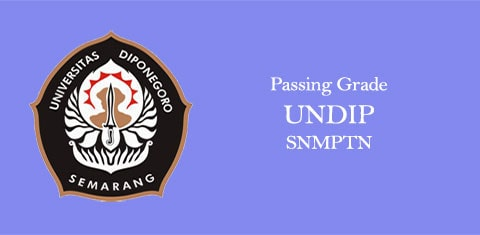 passing grade undip snmptn