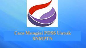 Cara Mengisi PDSS Untuk SNMPTN