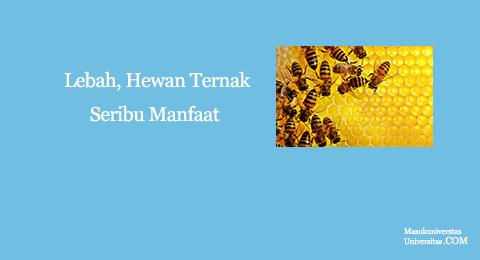 lebah hewan ternak seribu manfaat