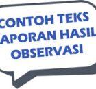 Contoh Teks Laporan Hasil Observasi, Berikut 10 Contoh